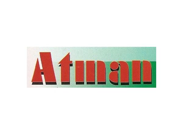 Calefactor Atman 25w Bettas Del Sur