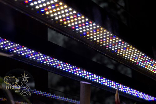 Fluval led strip light light catalogue light ideas fluval led strip light light gallery light ideas fluval led strip light light ideas light ideas mozeypictures Gallery