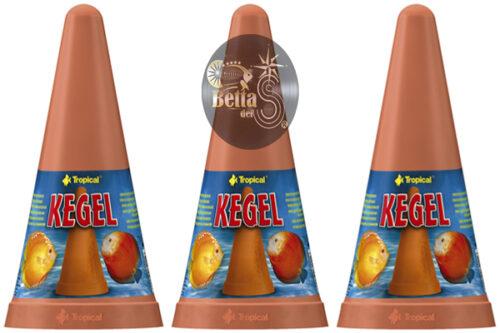 Tropical Cono Kegel