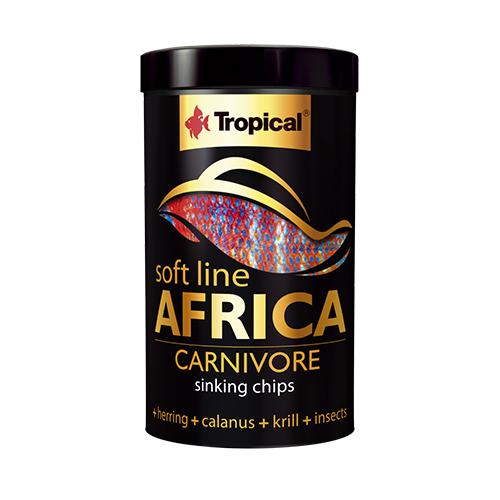 Tropical Africa Carnivore M