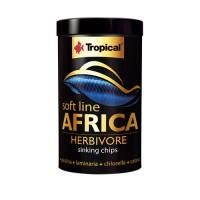 Tropical Africa Herbivore M