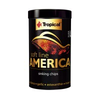 Tropical America M