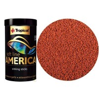 Tropical America S