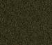 caridina-nano-sticks-100_1480158321