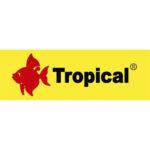 Tropical Amarillo 500x500